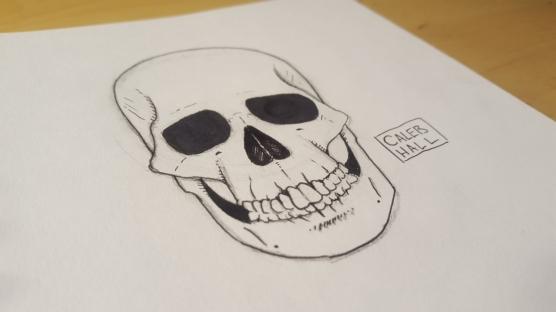 Skull_reference_calebhallart